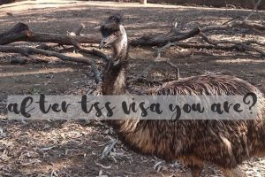 tss-visa-after-you-are-emu-asking-is